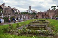 Roman Forum, altes Rom Lizenzfreie Stockbilder