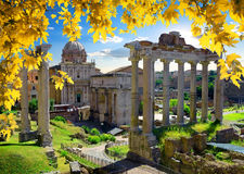 Roman Forum in autumn. Ruins of Roman Forum at sunny autumn day, Italy royalty free stock photo