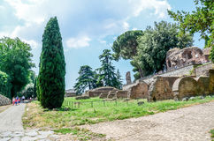 The Roman Forum, detail of ruins Royalty Free Stock Image