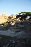 Roman Forum in the morning Royalty Free Stock Image