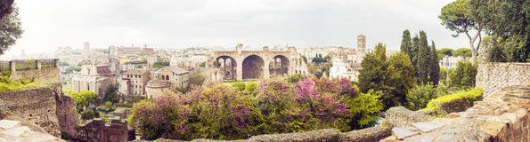 The Roman Forum panorama. In warm colors Stock Images