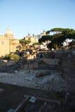 Roman Forum por la mañana Imagen de archivo libre de regalías