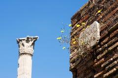 Roman Forum, Rom, Italien Lizenzfreie Stockbilder