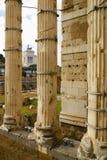 Roman Forum, Rom-` s historische Mitte, Italien Stockbilder