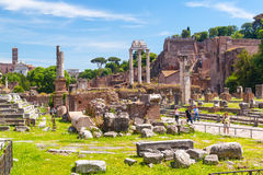 Roman Forum in Rome Royalty-vrije Stock Foto's