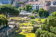 Roman Forum in Rome Royalty-vrije Stock Foto