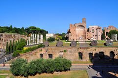 Roman Forum, Rome Italy Royalty Free Stock Photo