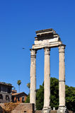 Roman Forum, Rome Italy Royalty Free Stock Photography