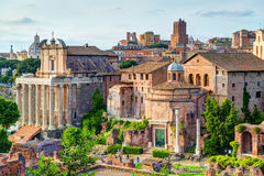 Roman Forum in Rome Royalty Free Stock Image