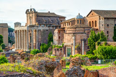 Roman Forum in Rome. Italy Stock Images