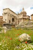 Roman Forum, Rome, Italy. Roman forum with arch and basilica on a sunny day with poppies in foreground, Rome, Italy Stock Image
