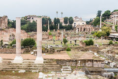 Roman Forum in Rome, Italy. Royalty Free Stock Images