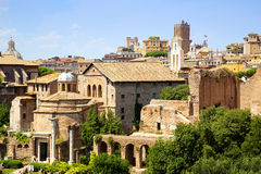Roman Forum Rome Stock Photos