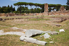 Roman forum ruins. Ruins of the ancient and famous roman forum in the city of Rome Stock Photography
