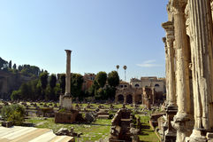 Roman Forum ruins. In the center of Rome Royalty Free Stock Photos