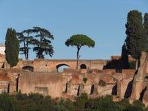 Roman Forum. Ruins of the Roman forum, Domus Severiana, Rome, Italy Royalty Free Stock Photo