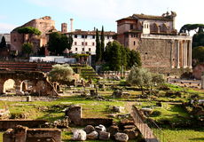 Roman  Forum. Ruins at the Roman  Forum (Foro Romano)  in Rome, Italy Royalty Free Stock Image