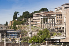 Roman Forum ruins. Rome, Italy Royalty Free Stock Photography