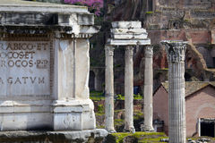 Roman Forum ruins in Rome, Italy Royalty Free Stock Photo