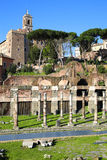 Roman Forum ruins in Rome, Italy. The Roman Forum ruins in Rome, Italy Stock Image