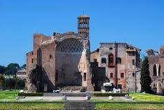 Roman Forum (Tempel van Venus en Rome) Royalty-vrije Stock Afbeeldingen