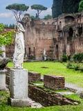 Roman Forum - Vestaloskulder royaltyfria foton