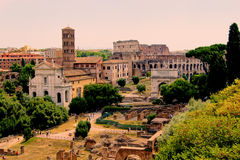 Roman Forum View Stock Photography