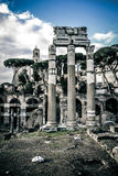 Roman Forums Royalty Free Stock Photography