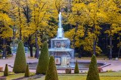 Roman fountain in Lower Gardens of Peterhof Stock Photography