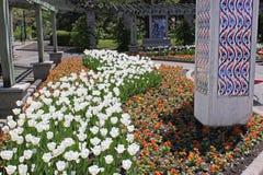 Roman garden Stock Photography