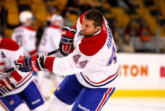 Roman Hamrlik Montreal Canadiens Stock Photography