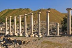 Roman kolommen in Israël Beit Shean Royalty-vrije Stock Fotografie