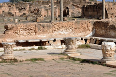 Roman Latrine, Leptis Magna Royalty Free Stock Photo