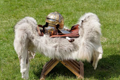Roman legionary Royalty Free Stock Image