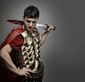 Roman legionary soldier. Picture of a Handsome roman legionary soldier Stock Images
