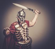 Roman legionary soldier Royalty Free Stock Photo