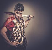 Roman legionary soldier. Legionary soldier with the sword Royalty Free Stock Image
