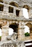 Roman Lion Stock Photos