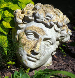 Roman modeled statue head in garden Royalty Free Stock Photo