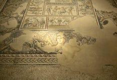 Roman Mosaic of Dionysius Royalty Free Stock Image