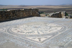 Roman Mosaic Floor. Found at Volubilis in Morocco royalty free stock image