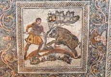 Roman mosaic fragment, Merida, Spain. Roman mosaic fragment, boar hunting scene, National Museum of Roman Art in Merida, Spain Stock Photos