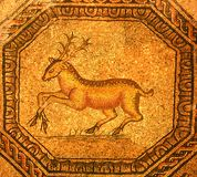 Roman mosaic of a golden stag Royalty Free Stock Image