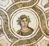 Roman mosaics Royalty Free Stock Photo