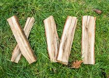 Roman numeral. Roman numerals made from oak. Old wood numbers. Old roman antique alphabet number on green grass background. Number. Sixteen stock photo
