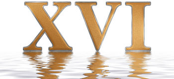 Roman numeral XVI, sedecim, 16, sixteen, reflected on the water Royalty Free Stock Image