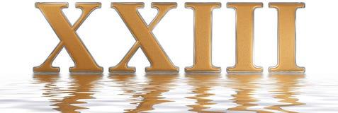 Roman numeral XXIII, tres et viginti, 23, twenty three, reflecte Royalty Free Stock Image