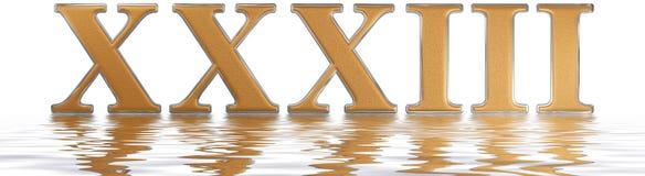 Roman numeral XXXIII, tres et triginta, 33, thirty three, reflec Stock Photography
