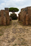 Roman path and buildings at Ostia Antica Italy with Stone pine o Stock Photos
