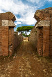 Roman path and buildings at Ostia Antica Italy with Stone pine o Stock Images
